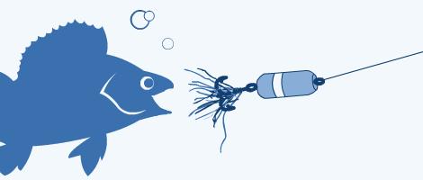 Мандула — максимум рыбы