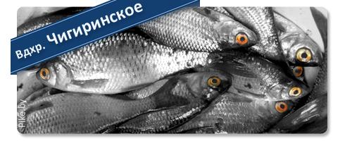 Рыбалка на Чигиринском водохранилище