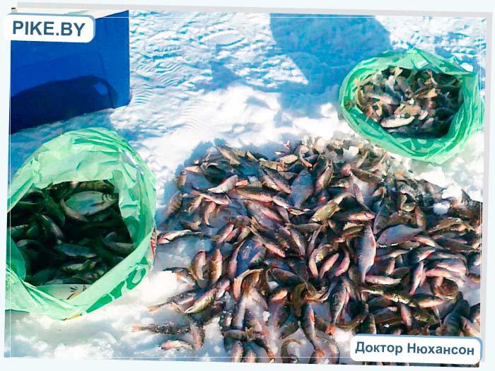 зимняя рыбалка на Белом озере