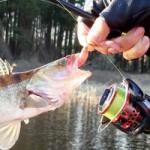 Мега рыбалка на на микроджиг