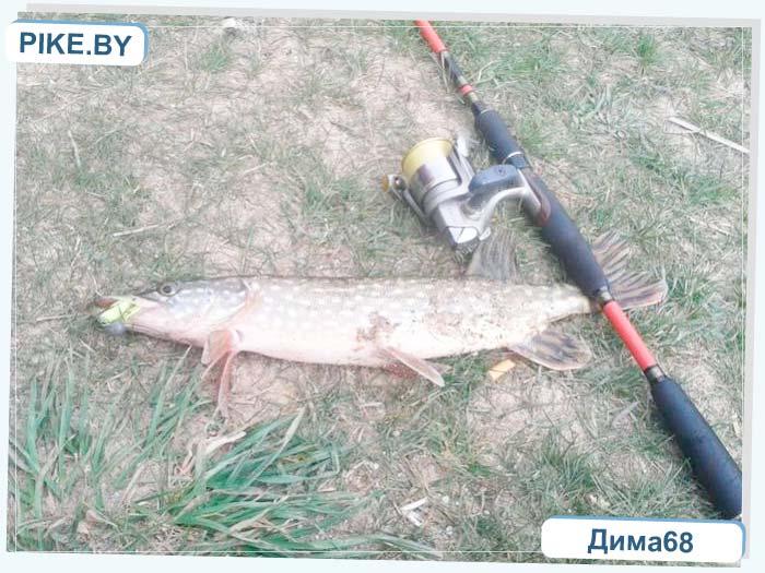 Селец рыбалка