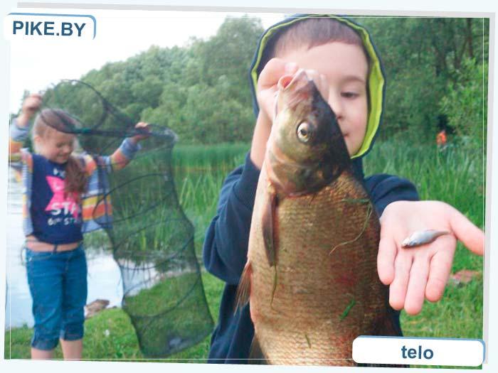 рыбалка на Вяче