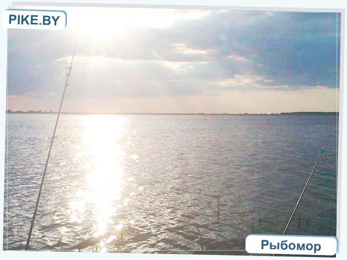 Днепро брагинское рыбалка