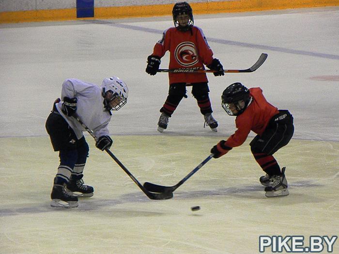 Хоккей в Бобруйском ледовом дворце