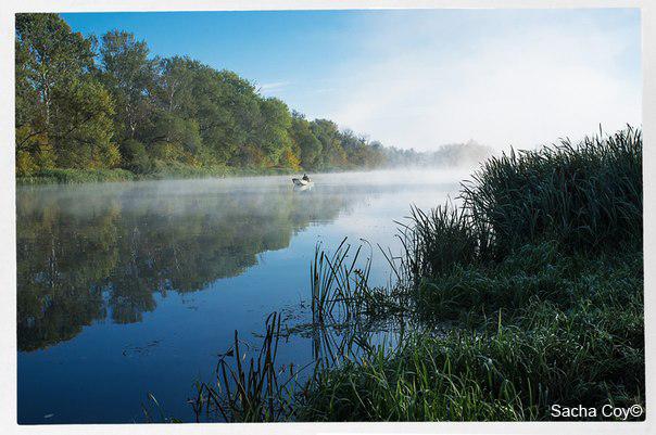 Прикормка для летней рыбалки