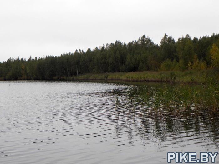 Материнское озеро Руденск Дружный