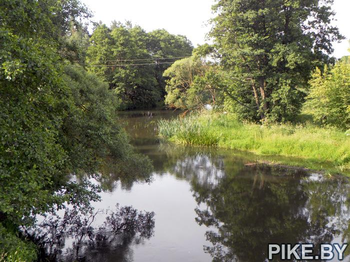 река Ошмянка в Солах