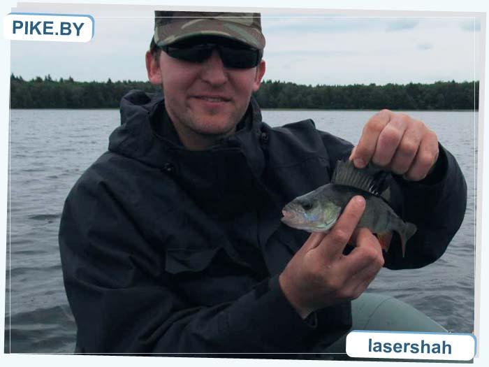 Свитязь рыбалка