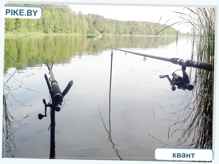 Рыбалка в Брестской области