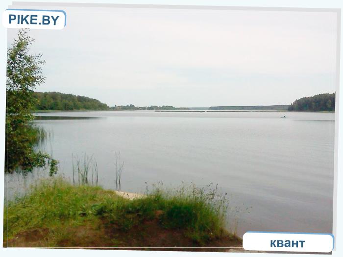 рыбалка на Ляховичском