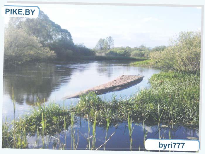 река Щара рыбалка