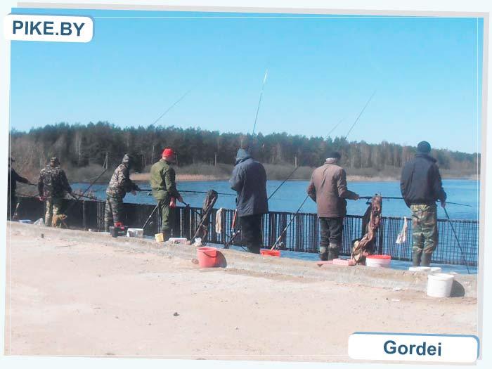 рыбалка на Ясельде