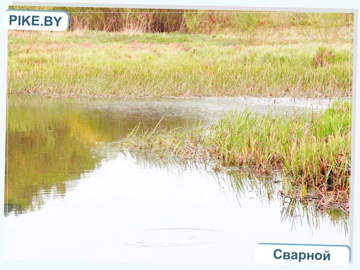 рыбалка на реке Уса