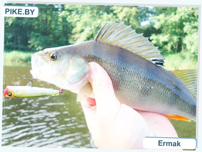 рыбалка на Немане