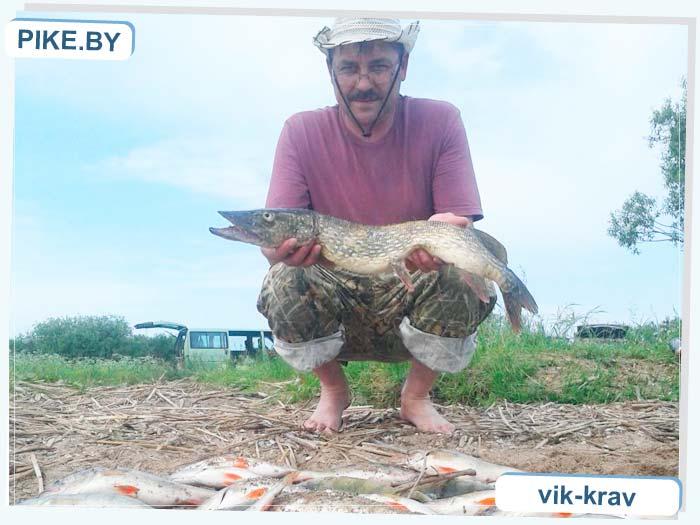 Лукомское рыбалка