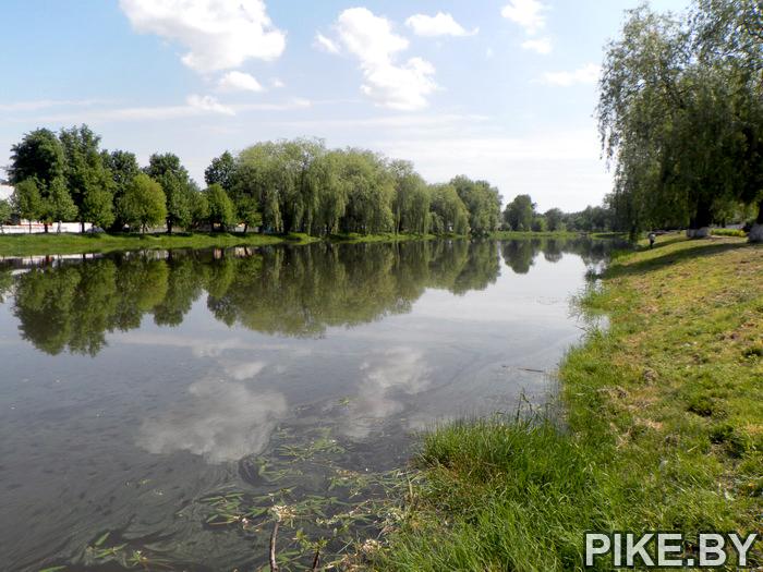 Ружанка река
