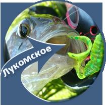 рыбалка на Лукомском озере