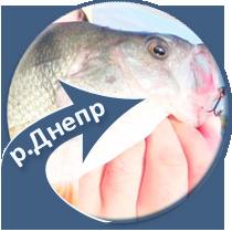 рыбалка на реке Днепр