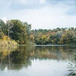 Линь на поплавок: снасти и прикормка