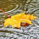 Рыбалка в дождь – 5 дельных советов