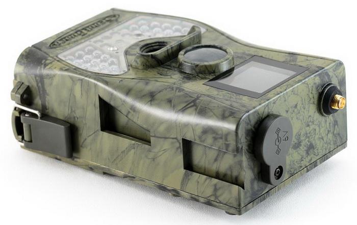 Камеры слежения или фотоловушки для охоты