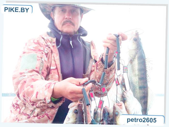 ловля судака осенью на вилейке