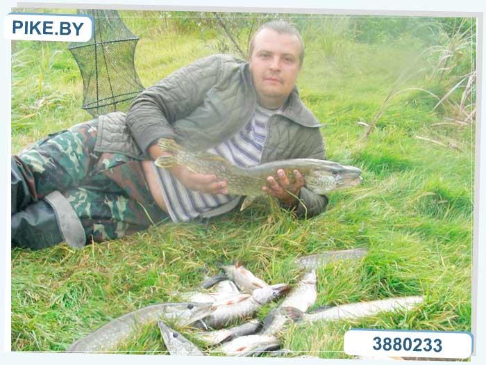 рыбалка на припяти осенью