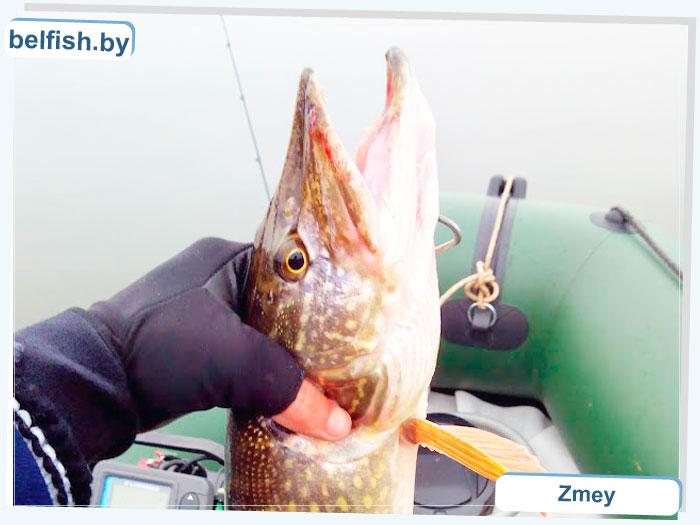 Рыбалка на Днепре ОСЕНЬЮ