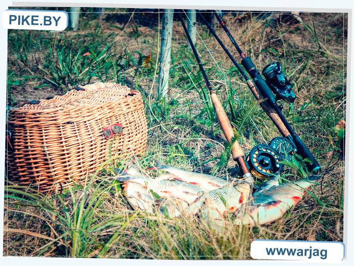 Рыбалка на Восточной Березине летом