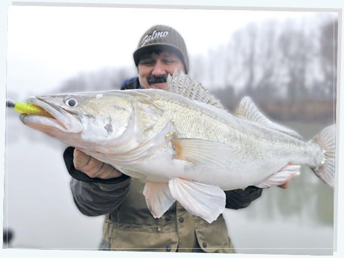Плюсы зимней рыбалки