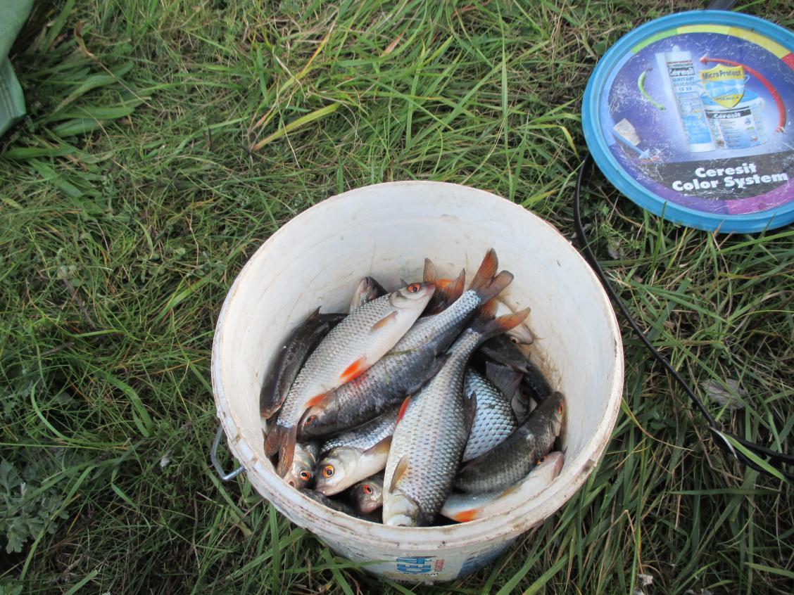 Воскресенье. Только вернулся с рыбозаградителя, даже не знаю, кому больше нужен этот отчёт мне или к