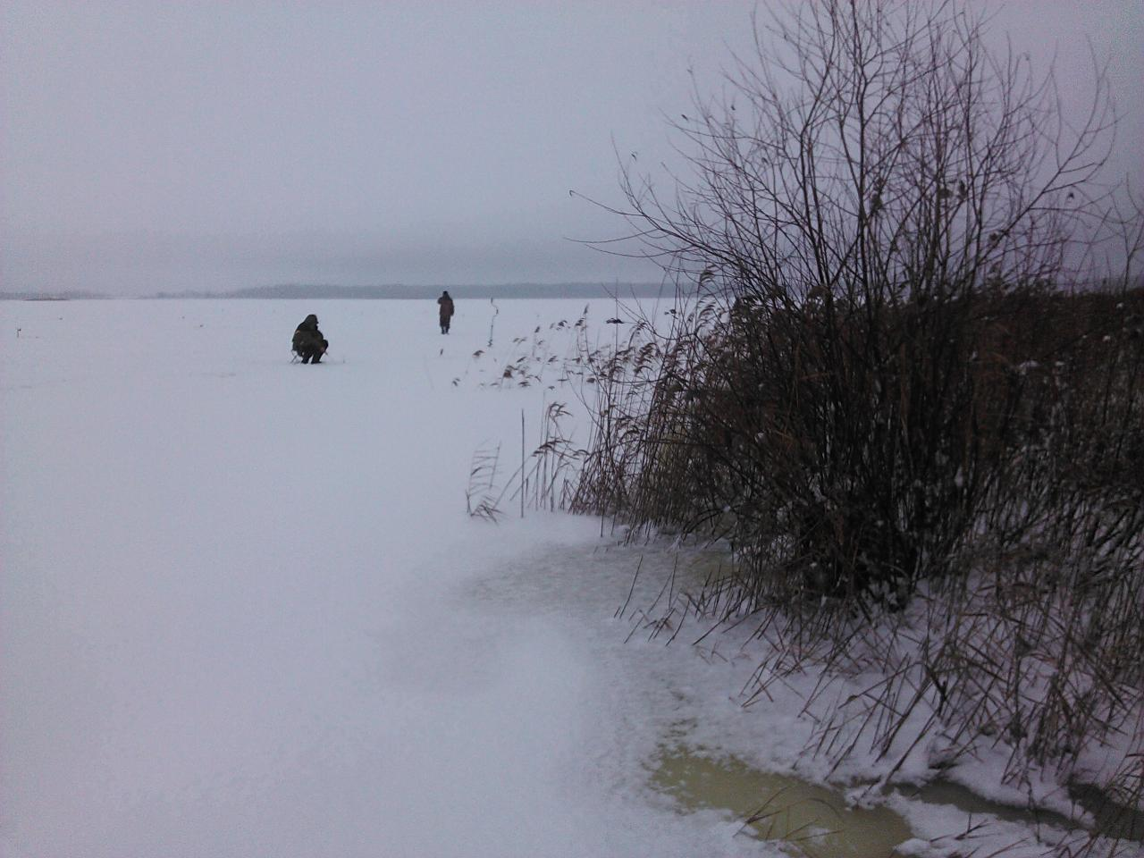 Любопытство взяло верх над здравым смыслом, решил заглянуть ...   Отчеты о рыбалке в Беларуси