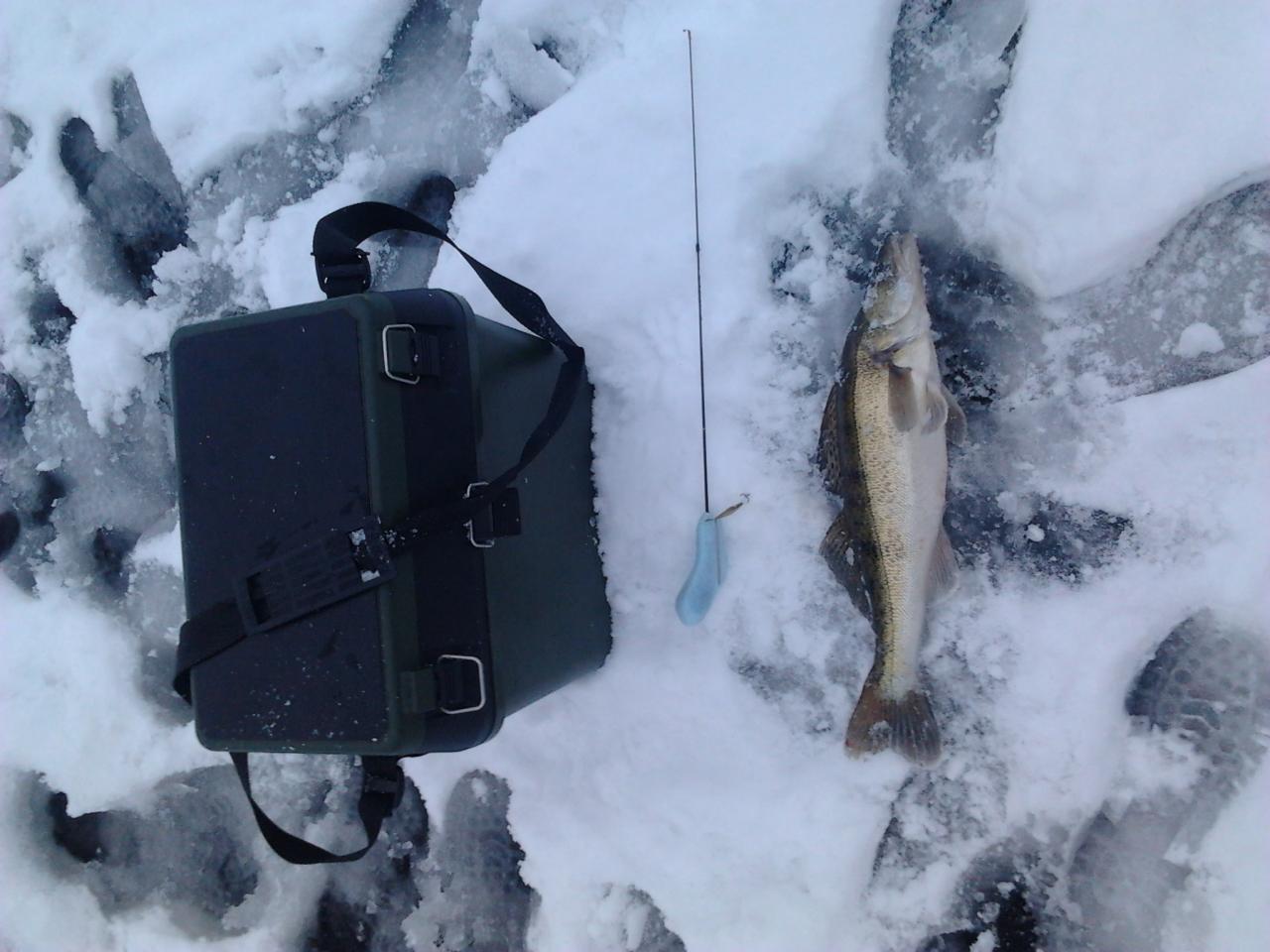 И я вчера побывал на данном водоеме, рыбачил ... | Отчеты о рыбалке в Беларуси