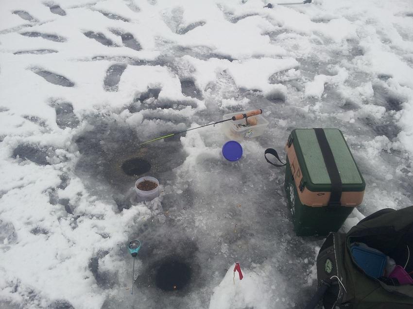 Сегодня пытался ловить плотву в районе слива,метров 700 ... | Отчеты о рыбалке в Беларуси