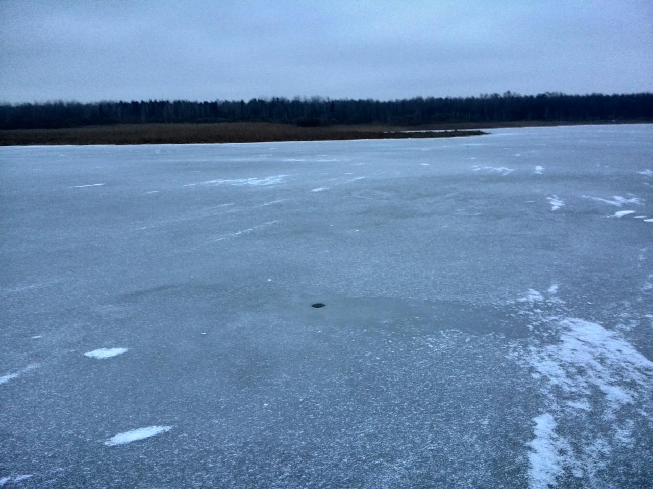 Запоздалый отчёт! Были 29 числа с тестем на ... | Отчеты о рыбалке в Беларуси