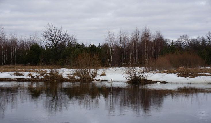 По причине вынужденного безделья и дабы не плесневеть ... | Отчеты о рыбалке в Беларуси
