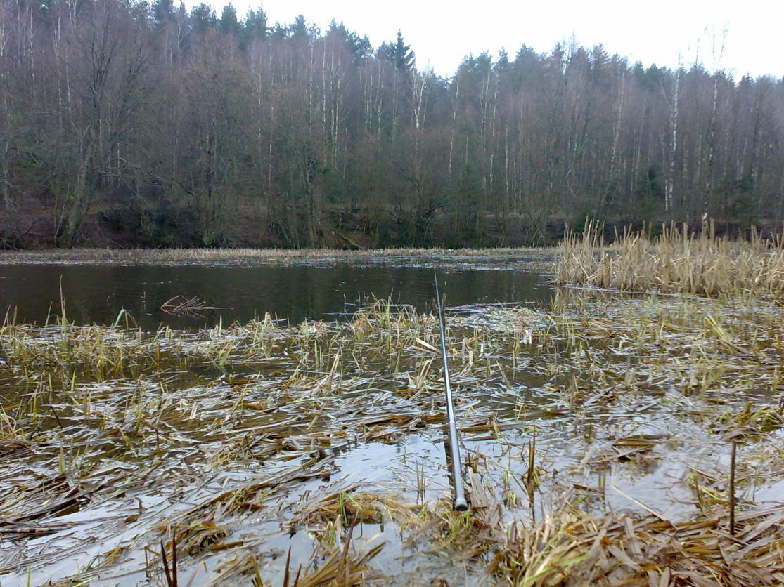 Доброго всем то ли дня, ци то вечера ... | Отчеты о рыбалке в Беларуси