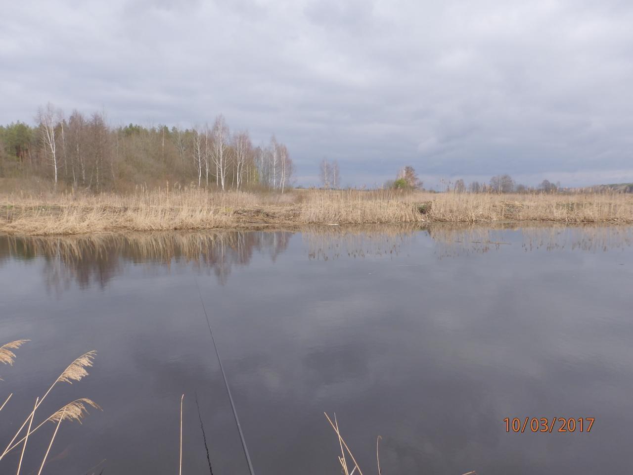 Сегодня устроил для себя мини-фестиваль, Гривденская уклейка. Традиционно ... | Отчеты о рыбалке в Беларуси
