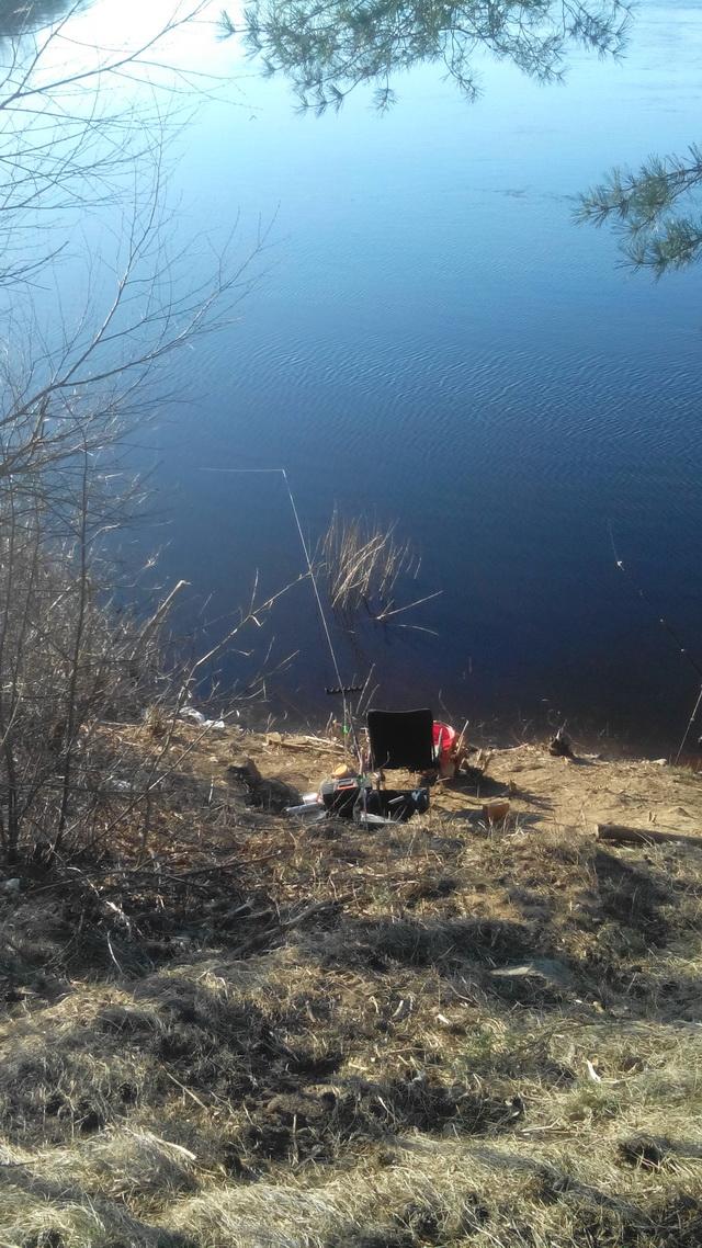 Вчера опять посетил устье Шевенки. Выехал по темноте ... | Отчеты о рыбалке в Беларуси
