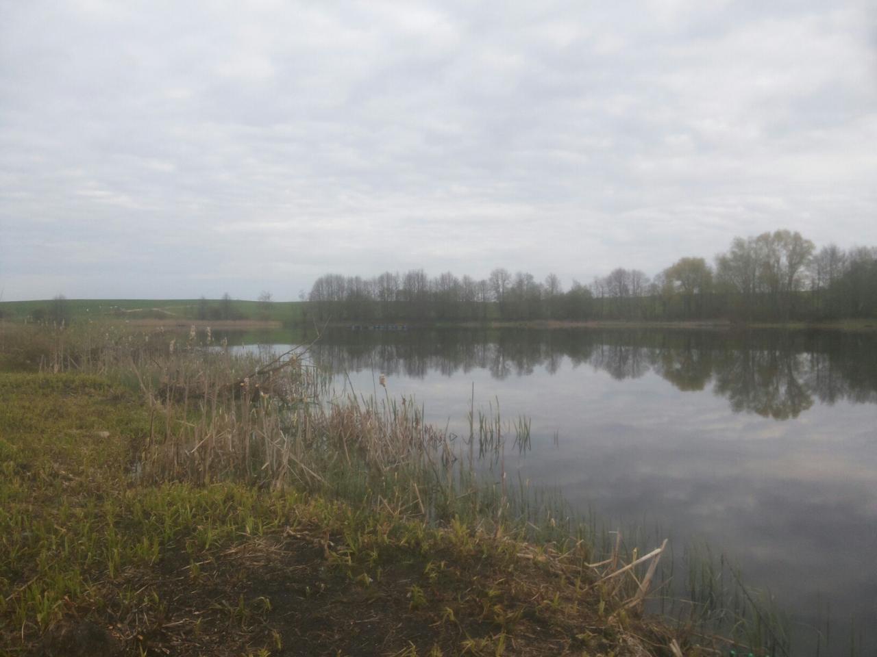 Место: Арендное озеро «Пинчин»Расположение: Республика Беларусь, Брестская область ... | Отчеты о рыбалке в Беларуси