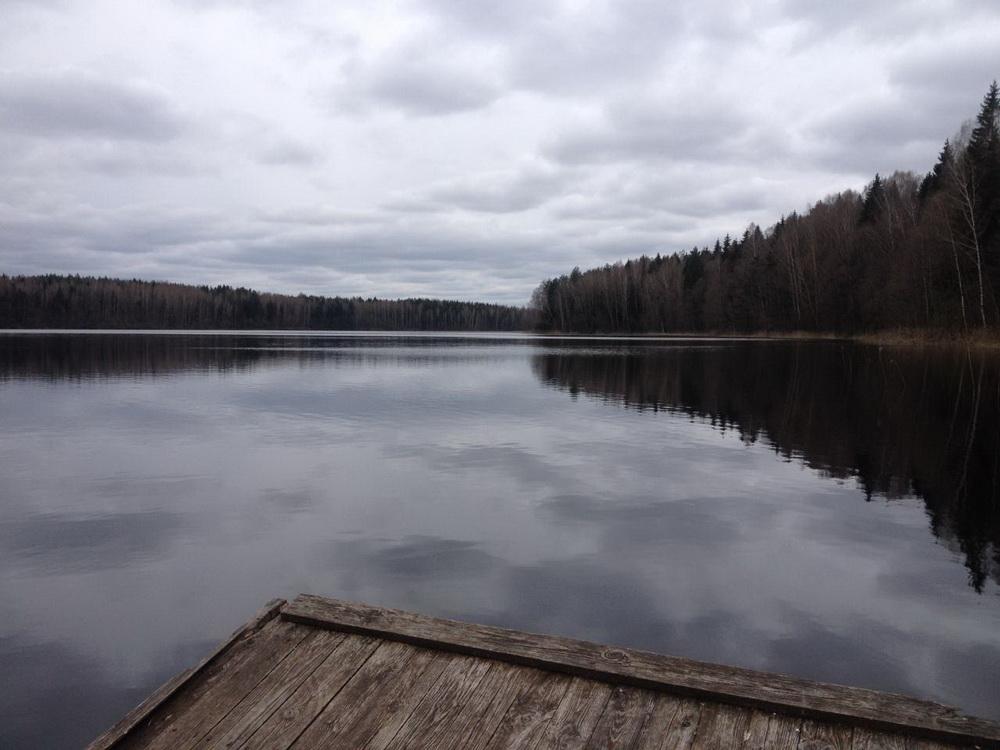 Вчера по дороге на дачу заехал на оз Сверзно ... | Отчеты о рыбалке в Беларуси