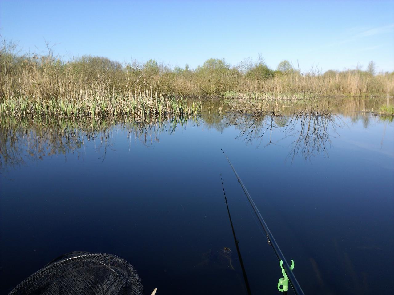 Я тоже побывал вчера на Косинов надежде поймать ... | Отчеты о рыбалке в Беларуси