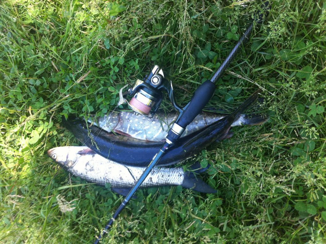 ва дня назад пришла ко мне новая палка Graphiteleader Tiro Prototype 772M... | Отчеты о рыбалке в Беларуси