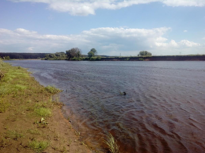 Отчетов нет, видать, и уловов тоже. Посему разбавлю ...   Отчеты о рыбалке в Беларуси