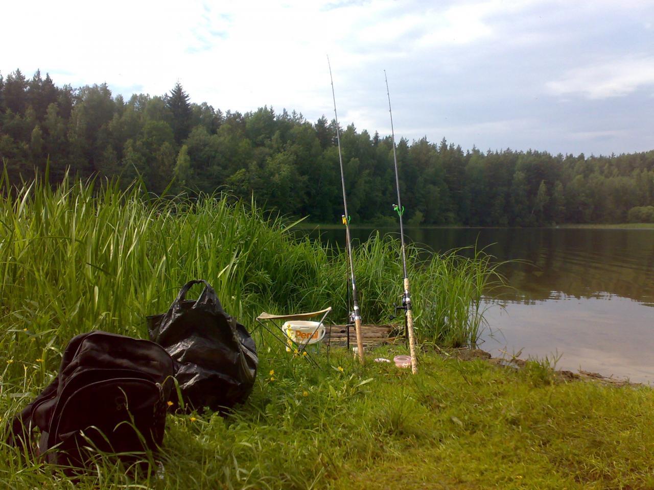 Вчера на Дофаренцию зашёл лещ... Я это чувствовал) ...   Отчеты о рыбалке в Беларуси