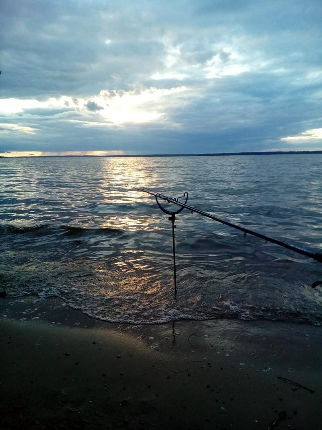 На выходных удалось порыбачить на В.В. со стороны деревни Редьковичи ... | Отчеты о рыбалке в Беларуси