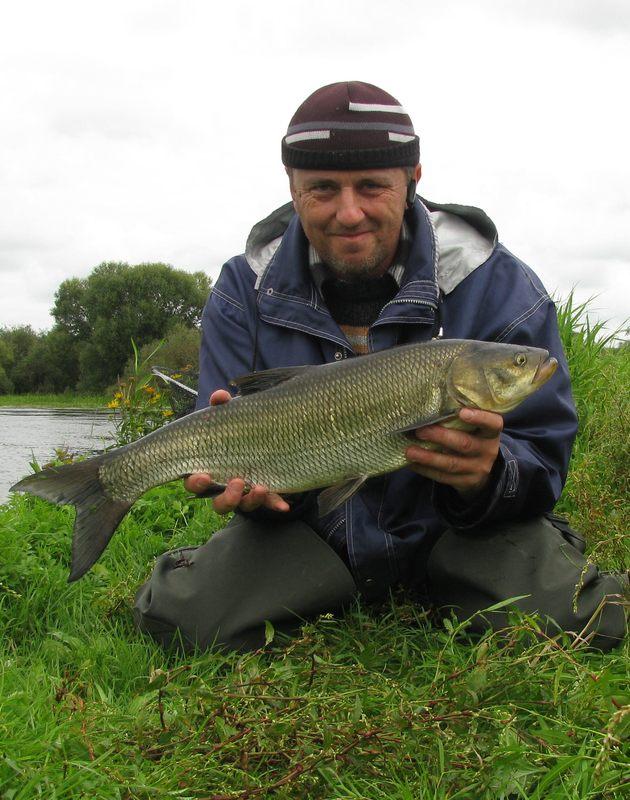 crepidoИз странного: ВБ верхнее течение (выше Бегомля) местами ... | Отчеты о рыбалке в Беларуси