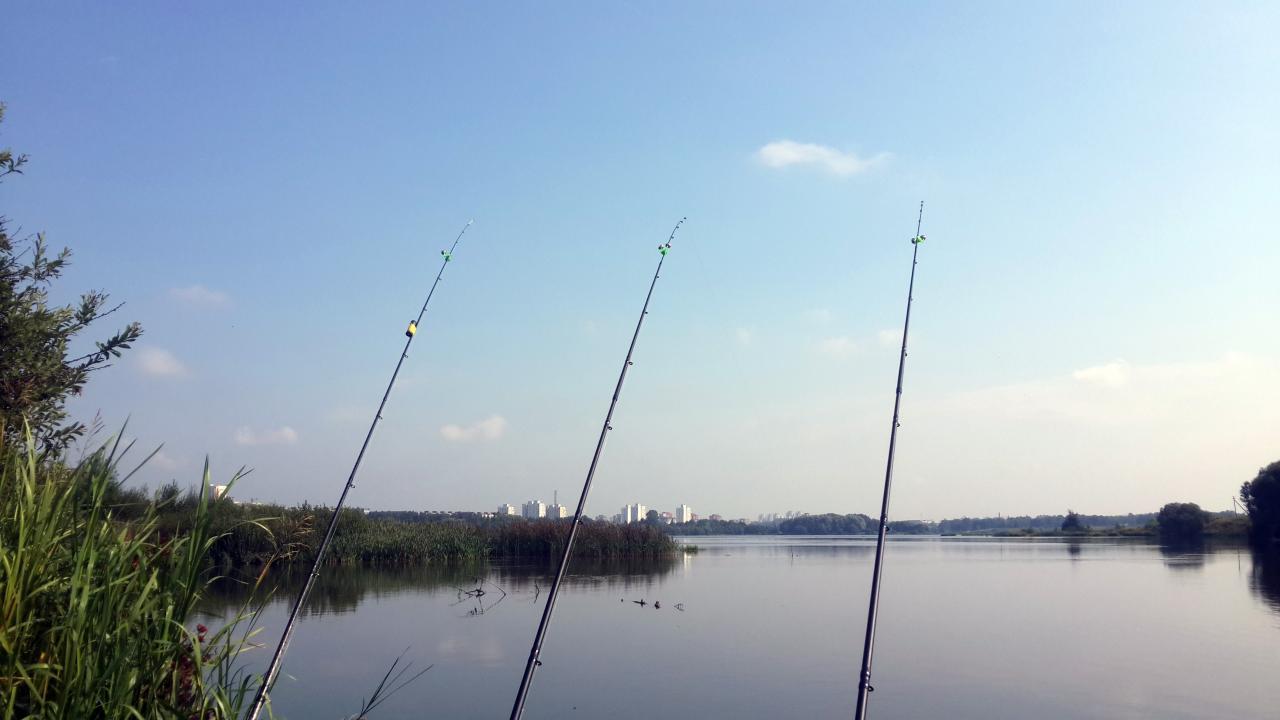 Доброго всем дня.Был в краткосрочном двухнедельном отпуске. Много ... | Отчеты о рыбалке в Беларуси