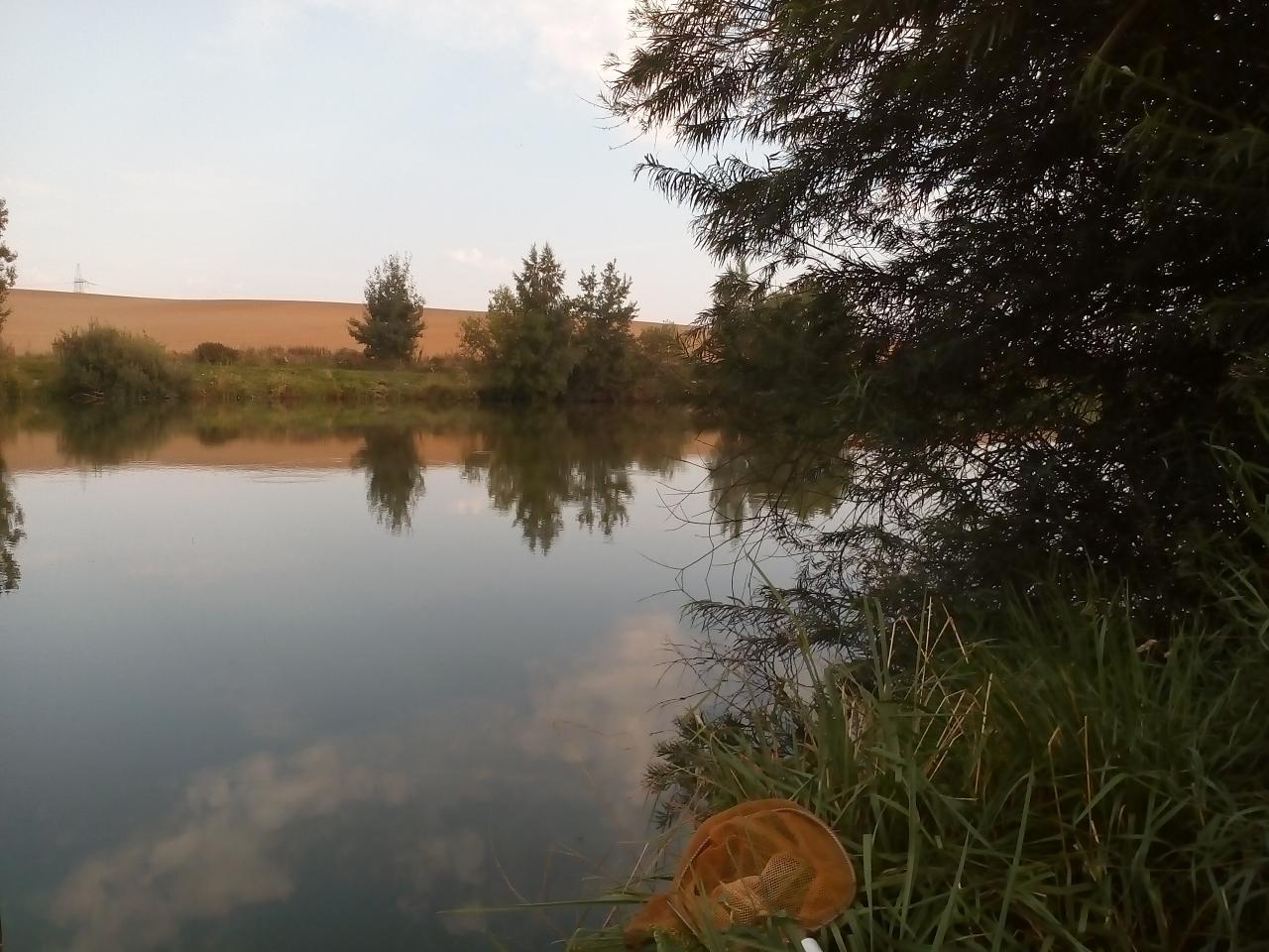 Вчера решил вечер провести на Ярково. Остатки перловки ... | Отчеты о рыбалке в Беларуси