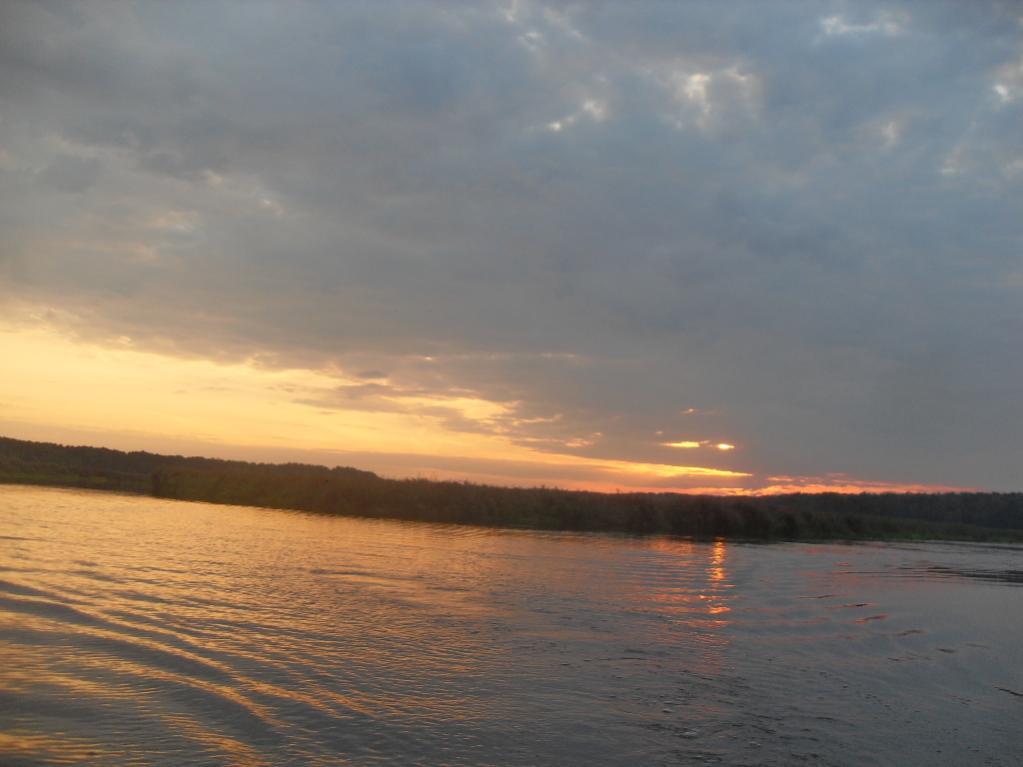 динамо....Ночью три подлещика грамм по 400 и все ... | Отчеты о рыбалке в Беларуси